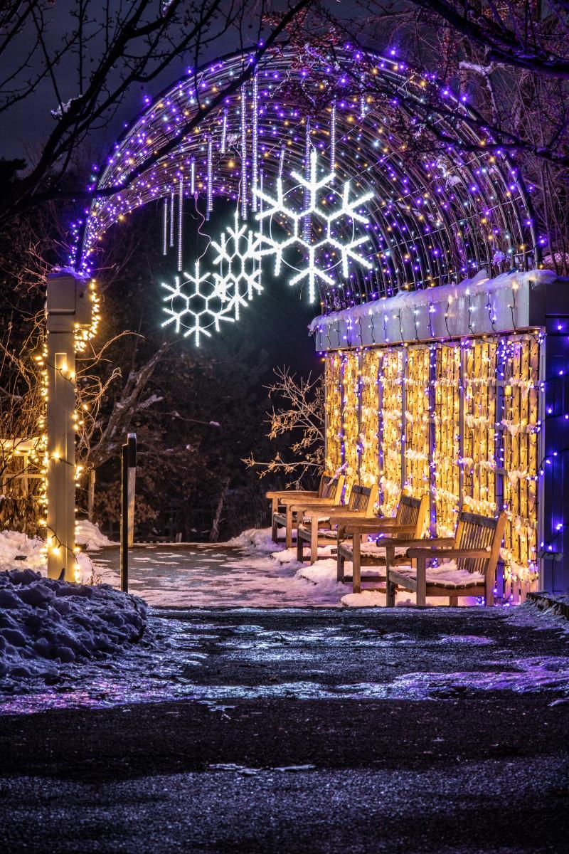 Minneapolis Christmas Lights 2020 Winter Lights 2020: Winter in Bloom | Explore Minnesota
