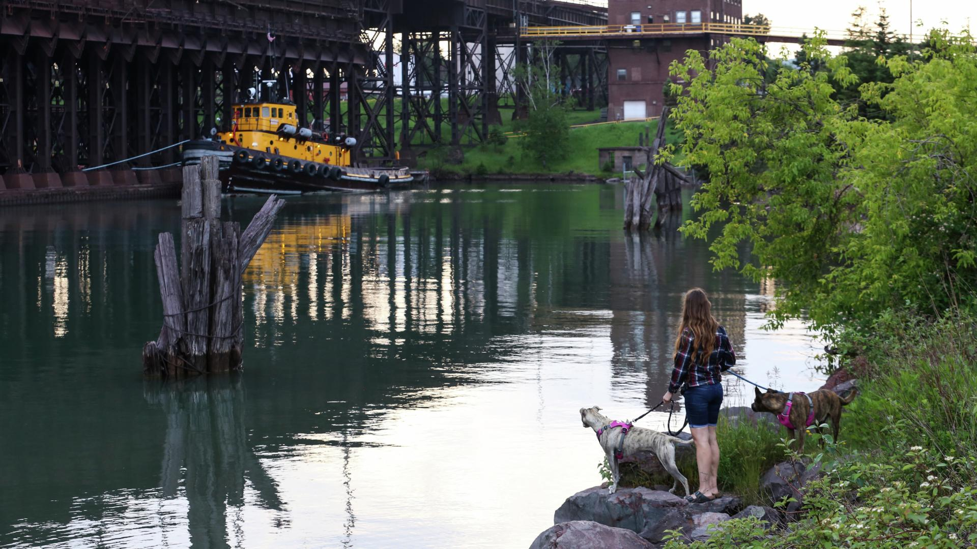 Woman with dogs in Two Harbors