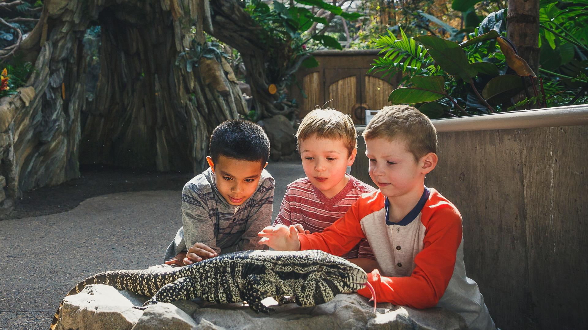 Kids with reptile at Minnesota Zoo