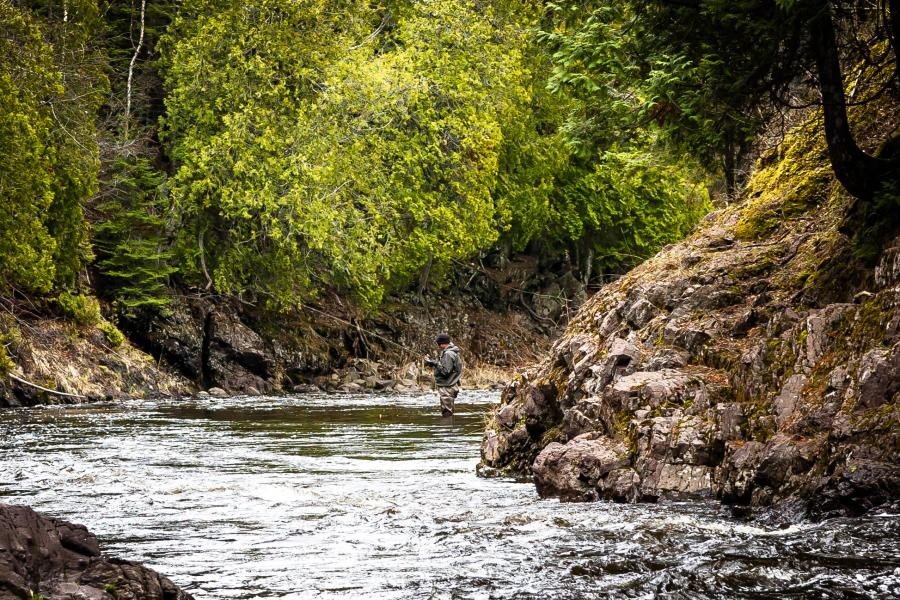 River fly fishing near Grand Marais
