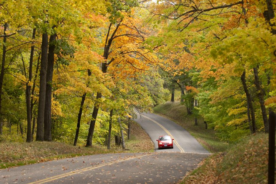 Fall drive on the Scenic Byway in Bemidji State Park