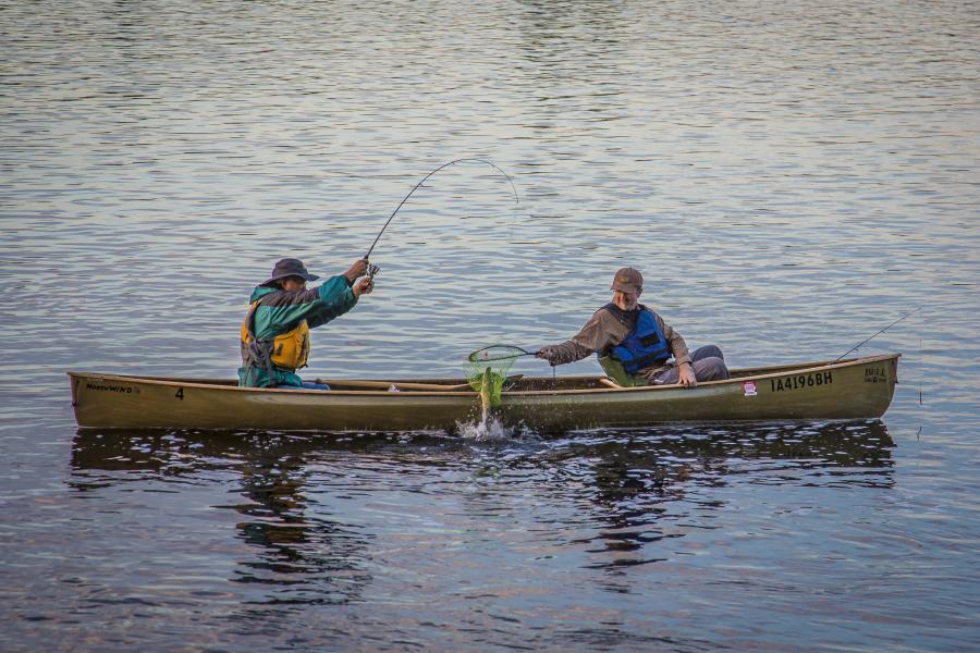 Two men catch a fish in the Boundary Waters