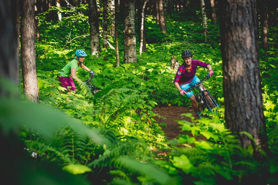 Two mountain bikers in a fern-covered forest in Duluth