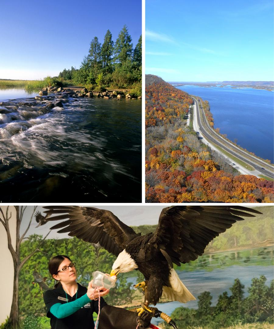 Eine Fotocollage aus Lake Itasca, einer Luftaufnahme der Great River Road in Winona und einem Weißkopfseeadler im National Eagle Centre in Wabasha