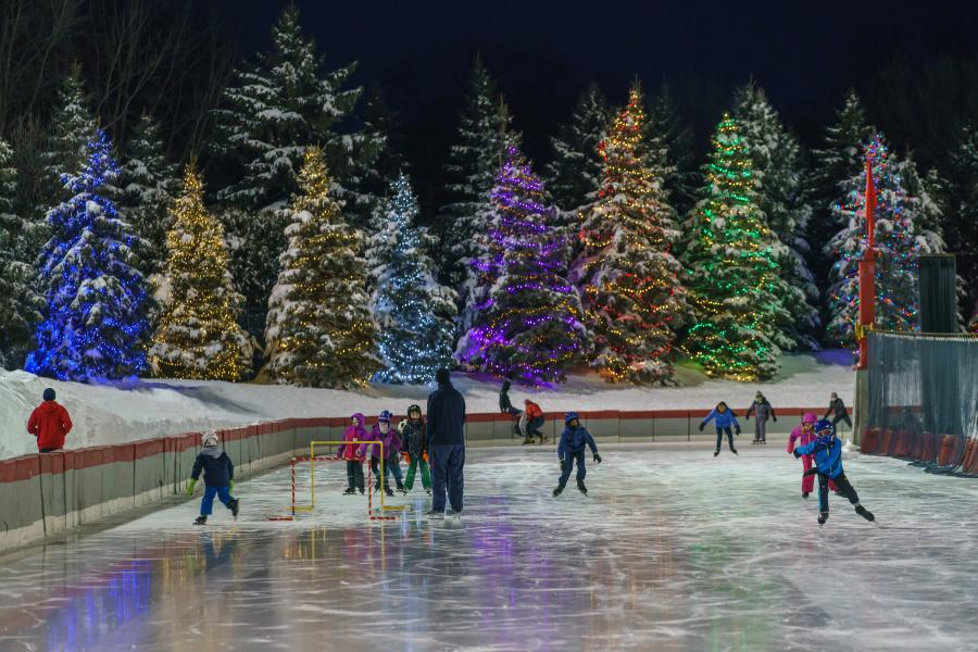 The Roseville Oval lit up for the holidays
