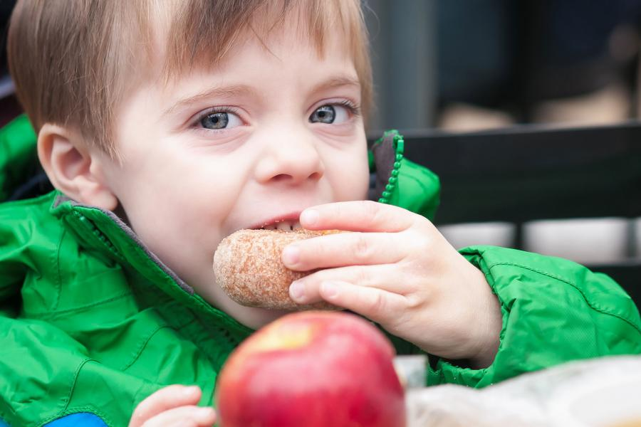 Boy eating apple cider doughnut