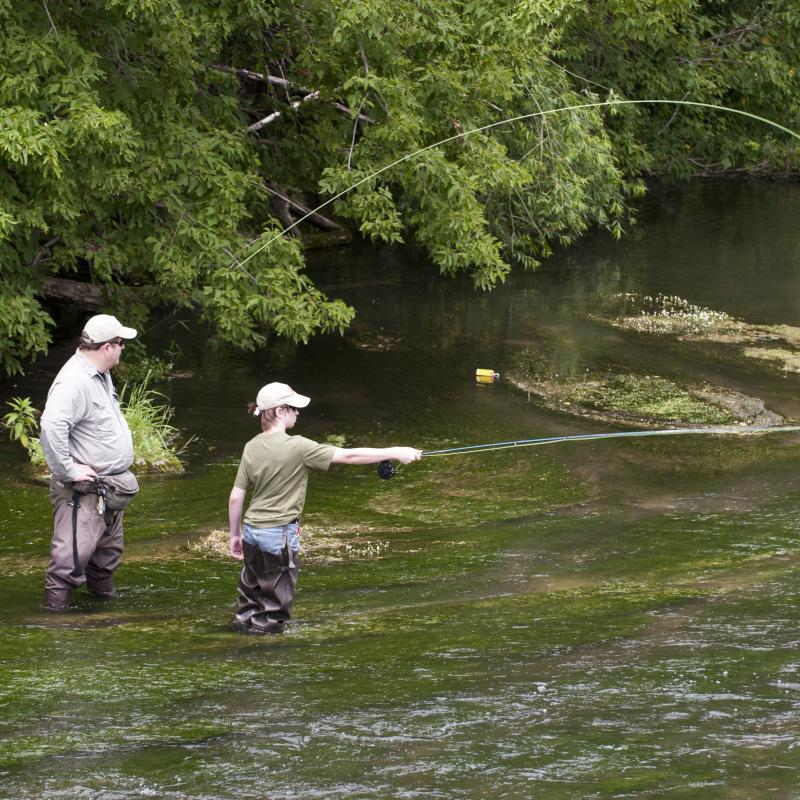 Man and boy fly casting on the Root River in Preston