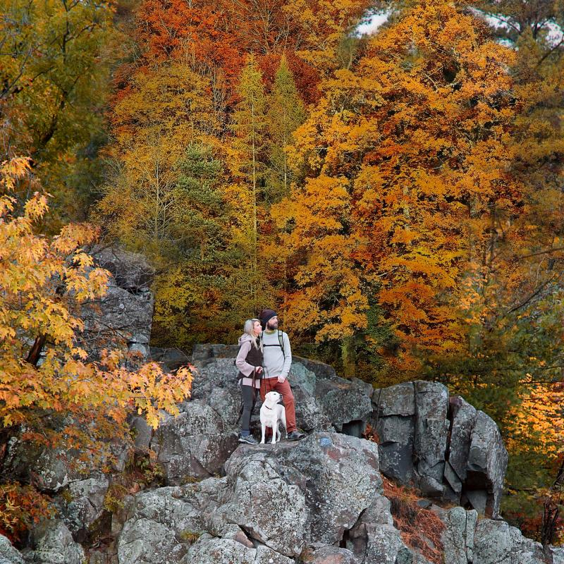 Couple and dog standing on cliff in the fall