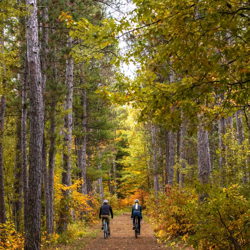Fall biking in the Chippewa National Forest