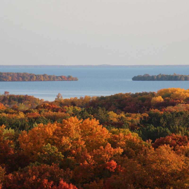 Fall trees from above Mille Lacs Kathio State Park