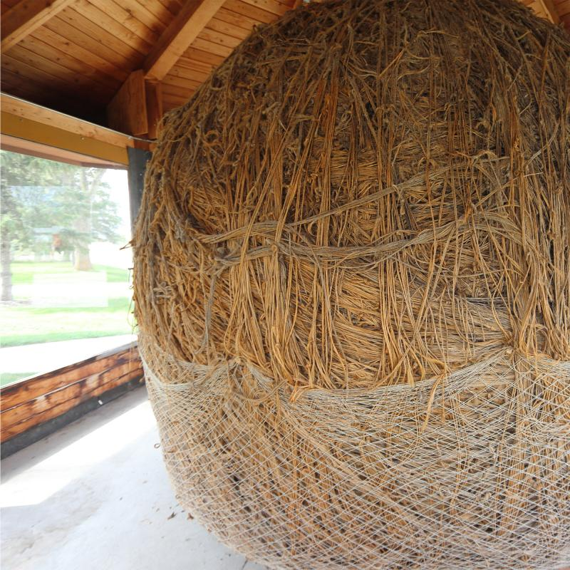 Minnesota's largest ball of twine