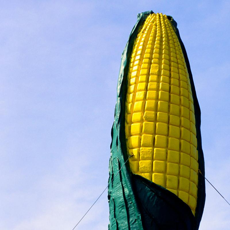 Olivia water tower and large corn cob sculpture
