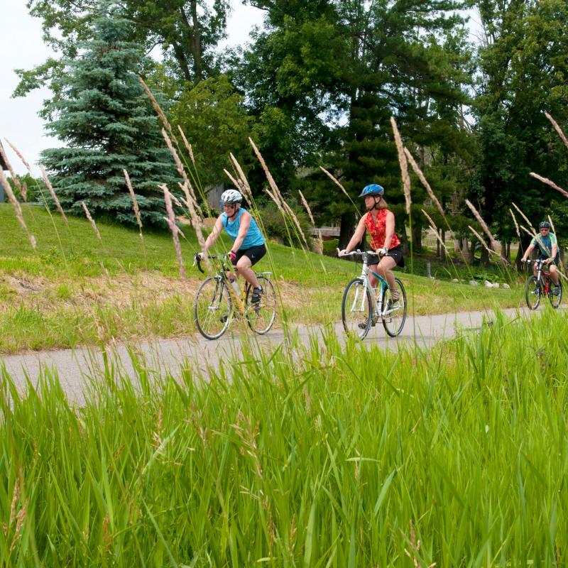 Bicyclists on the Paul Bunyan State Trail