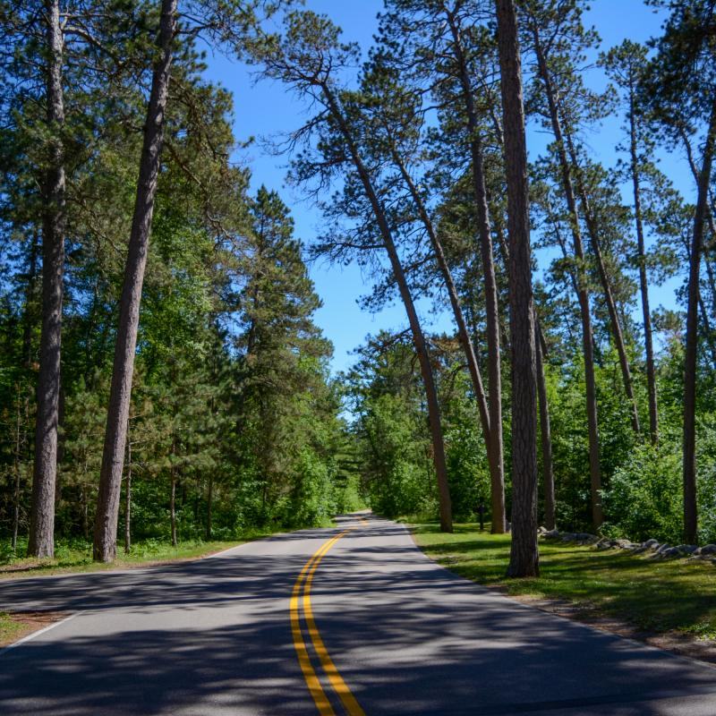 The Wilderness Drive in Itasca State Park